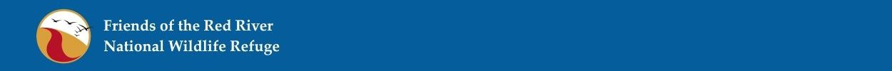 cropped-cropped-Newest-Blue-Banner.jpg